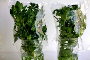 store-parsley-cilantro-2